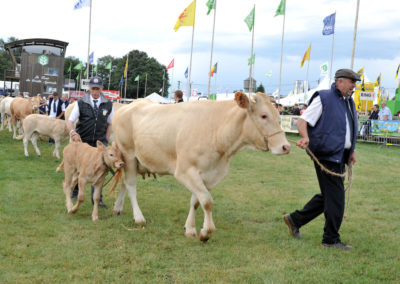 Libramont Agricultural Fair 17